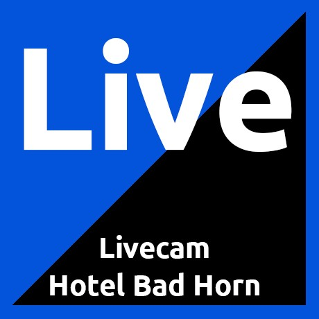 Webcam Bad Horn myhorn mysteinach